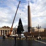 У Ватикані встановлено Різдвяну ялинку