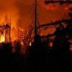 Чорногірський хребет у вогні!