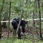 Грибник у Карпатах наштовхнувся на скелет на дереві!