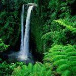 Водоспади Самоа