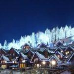 Туристичні стежки і бобслей: навіщо їхати в гірськолижні комплекси влітку