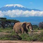 Що подивитися в Танзанії