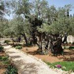 ТОП-6 пам'яток Єрусалима