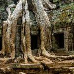 Таємниця стародавнього міста Ангкор