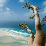 7 найбільш незвичайних пейзажів світу